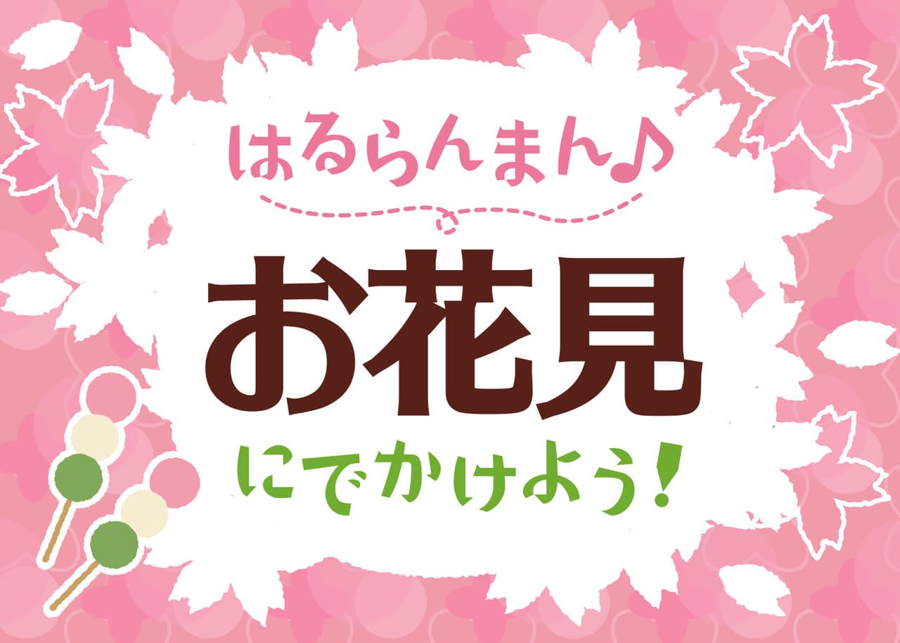 お花見の無料店舗ポップ 桜と団子のデザイン ピンク色ver