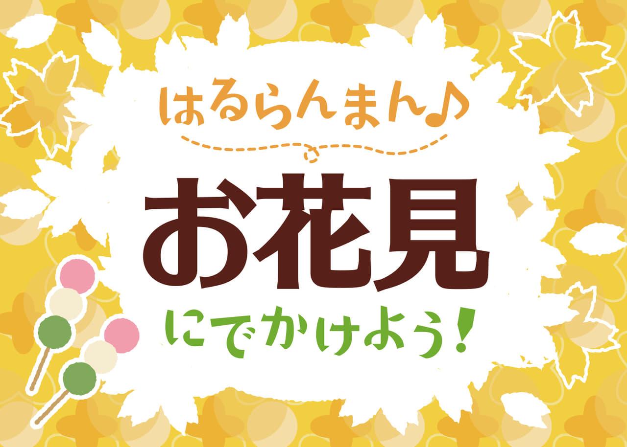 お花見の無料店舗ポップ 桜と団子のデザイン 黄色ver